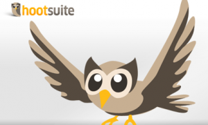 The HootSuite Owl
