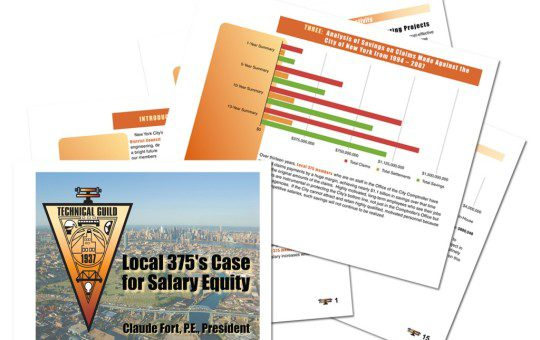 #DESIGN: Local 375 – Salary Equity Study Document